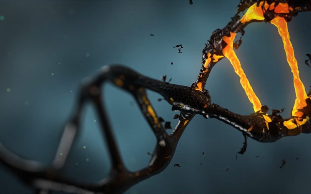 Scientists Discover Hereditary Basis for Insomnia