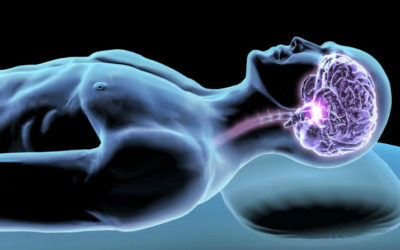 Neuroscientists Locate Brain's Control Center for Sleep-Wake Cycle
