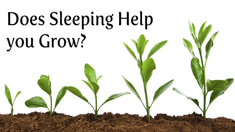Does Sleeping Help You Grow?
